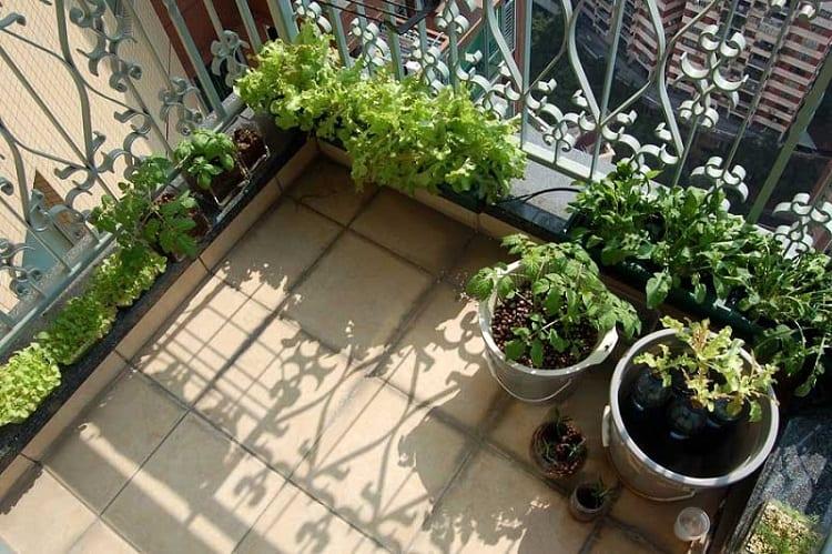 Garden On Balcony