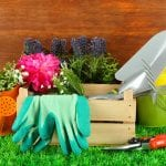 20 Must-Have Garden Tools: Make Your Own Food