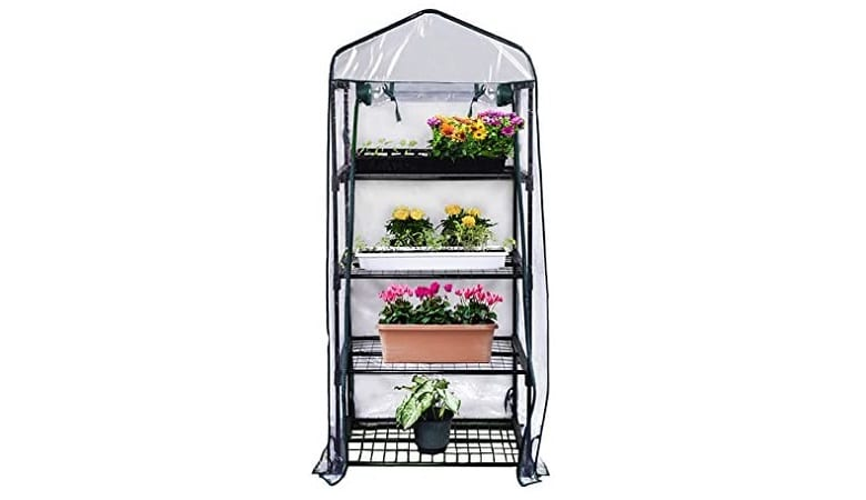 Best Mini Greenhouse Kit for Your First Urban Garden 3