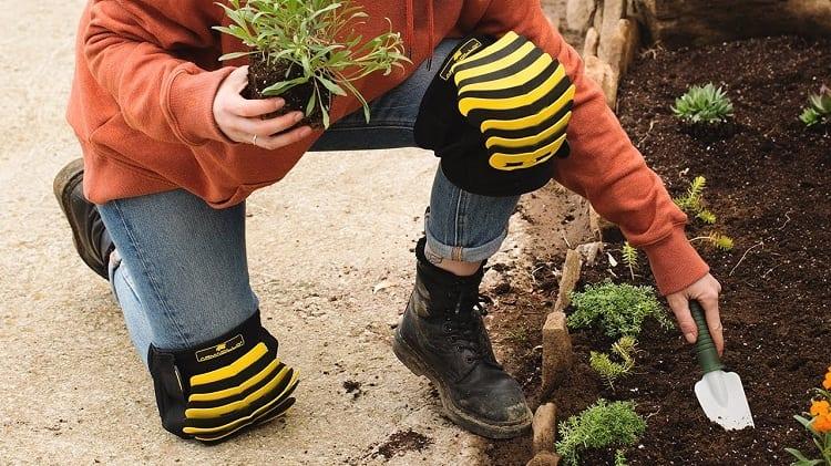 Wearing Knee Pads In Garden