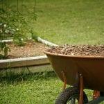 How to Mulch Your Garden - Organic vs Inorganic