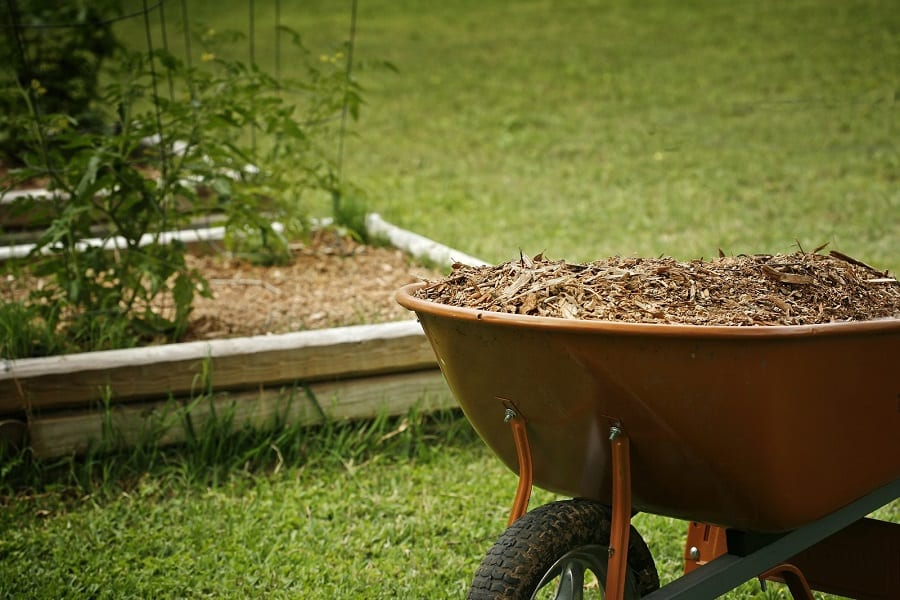 How To Mulch Your Garden: Organic Vs Inorganic
