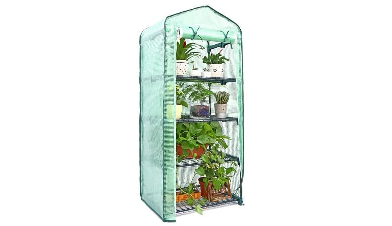 Best Mini Greenhouse Kit for Your First Urban Garden 1