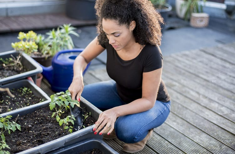 Woman Planting Veggies