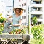 A Starter Guide to Urban Gardening