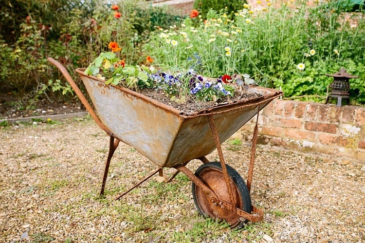 Wheelbarrow Gardening