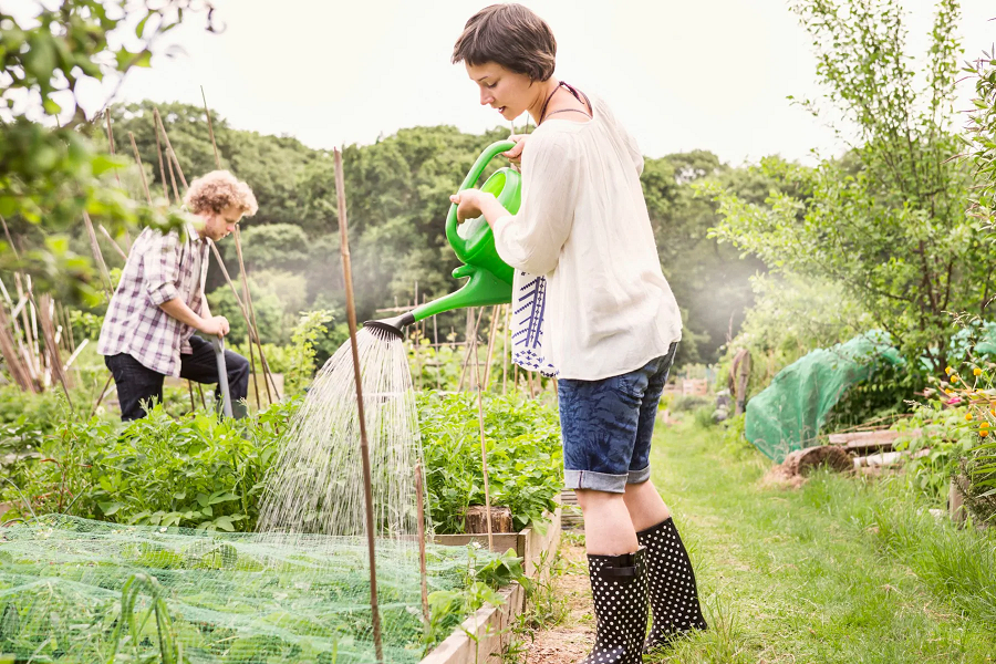 An Ultimate Guide To Garden Sharing