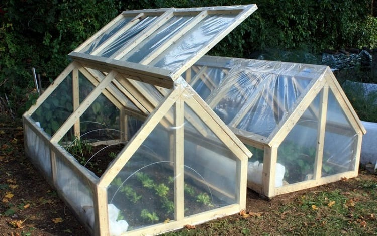 ARE MINI GREENHOUSES ANY GOOD?