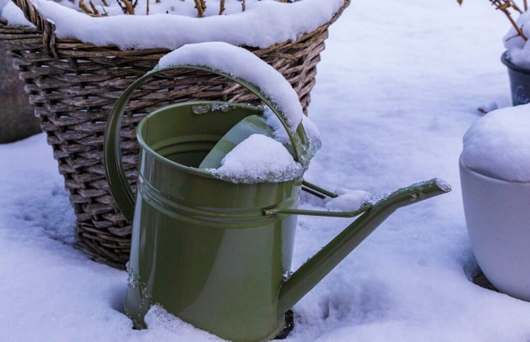 snow on watering can