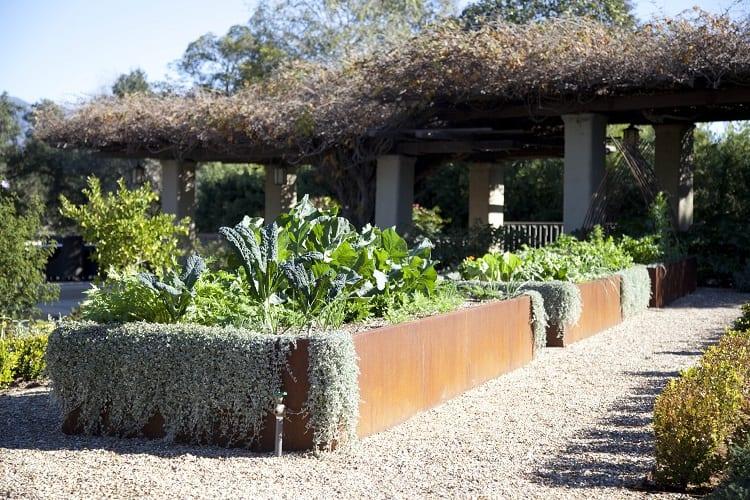 What Do You Need For An Urban Garden?