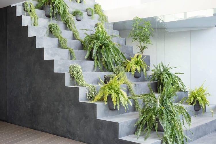 Stair Micro Gardening
