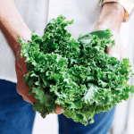 Your Guide to Growing Kale Indoors